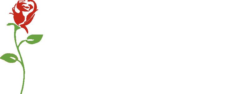 Logo-Bestattungen-Sinn